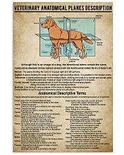Veterinary Anatomical Planes Description 11x17 Poster front