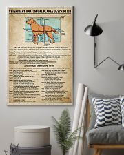 Veterinary Anatomical Planes Description 11x17 Poster lifestyle-poster-1