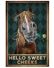 Horse Girl - Hello Sweet Cheeks 11x17 Poster front