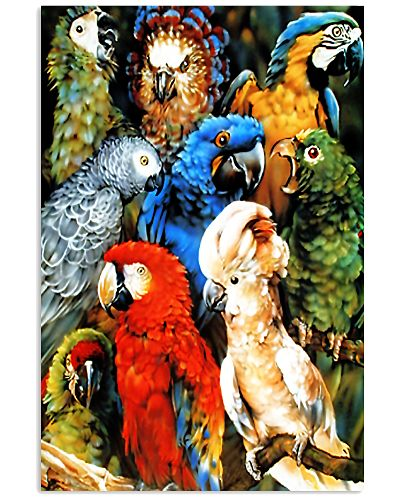 Parrot Water Colors