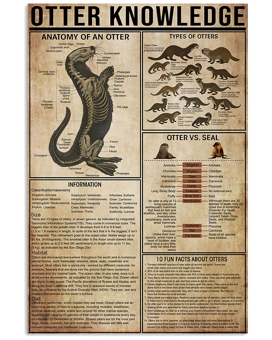 Otter Knowledge 11x17 Poster