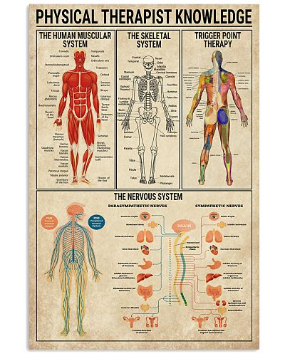 Physical Therapist Knowledge