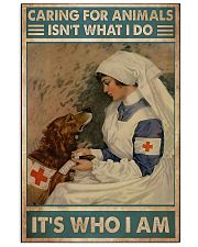 Veterinarian Caring For Animals It's Who I Am 11x17 Poster front