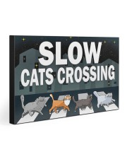 Veterinary Slow Cats Crossing 30x20 Gallery Wrapped Canvas Prints thumbnail