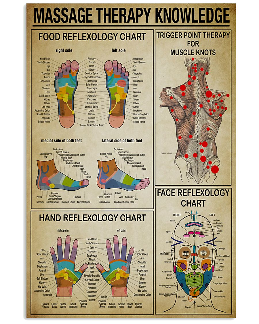 Massage Therapy knowledge 11x17 Poster