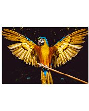 Beautiful Parrot  24x16 Poster front