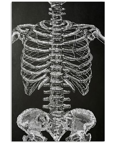 Radiology - Human Skeleton