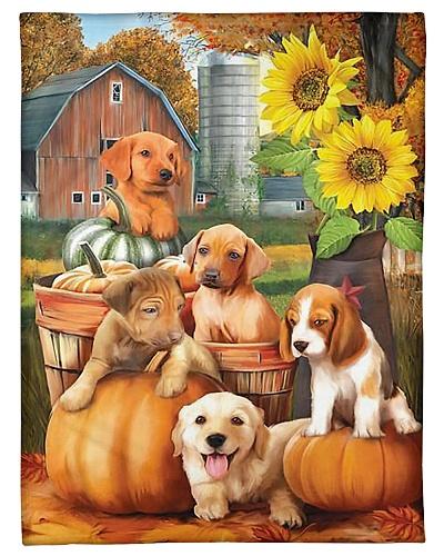 Autumn Puppies GS-LD0811