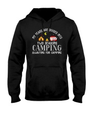 My Years Are Divided Into Two Seasons Hooded Sweatshirt thumbnail