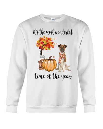 The Most Wonderful Time - Fox Terrier