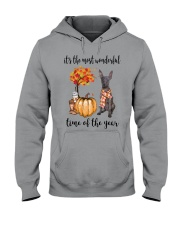 The Most Wonderful Time - Xolo Hooded Sweatshirt tile