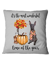 The Most Wonderful Time - Xolo Square Pillowcase thumbnail