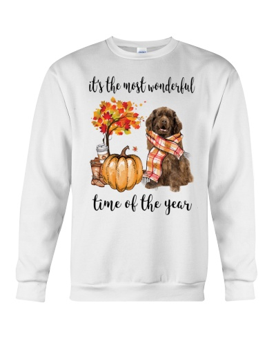 The Most Wonderful Time - Brown Newfoundland