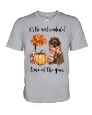 The Most Wonderful Time - Brown Newfoundland V-Neck T-Shirt thumbnail