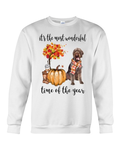 The Most Wonderful Time German Wirehaired Pointer