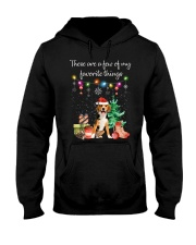 A Few of My Favorite Things - Beagle Hooded Sweatshirt front