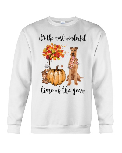 The Most Wonderful Time - Irish Terrier