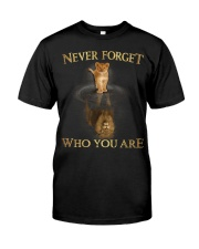 Never Forget Who You Are Classic T-Shirt front