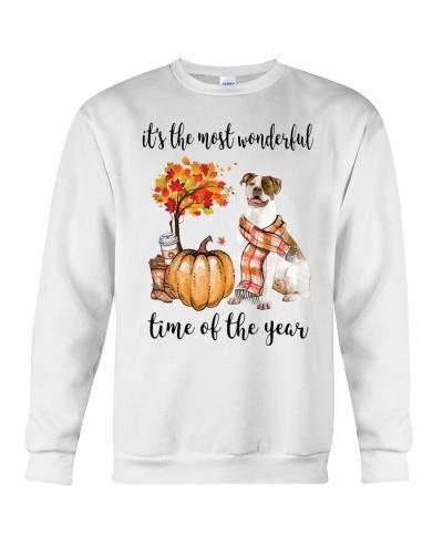 The Most Wonderful Time - American Bulldog