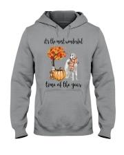 The Most Wonderful Time - Borzoi Hooded Sweatshirt thumbnail