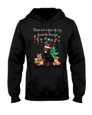 A Few of My Favorite Things - Rottweiler Hooded Sweatshirt thumbnail