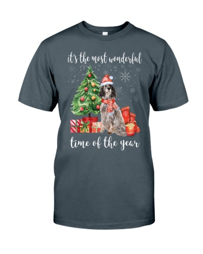The Most Wonderful Xmas - English Setter