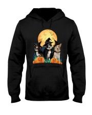 Howloween Border Collie  Hooded Sweatshirt thumbnail