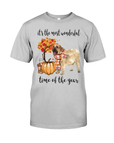The Most Wonderful Time - Spanish Mastiff