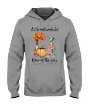 The Most Wonderful Time - Greyhound Hooded Sweatshirt thumbnail