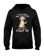 Small and Sensitive Lab Hooded Sweatshirt thumbnail