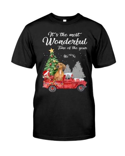 Wonderful Christmas with Truck - Dachshund