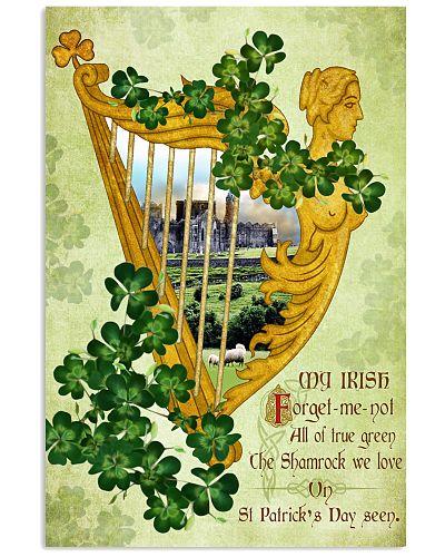 Coat Ireland Poster - SKY