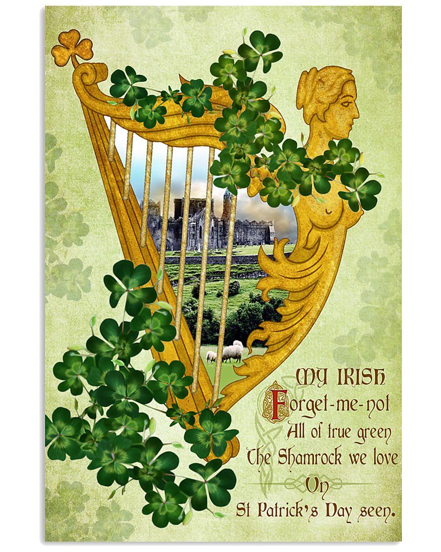 Coat Ireland Poster - SKY 16x24 Poster
