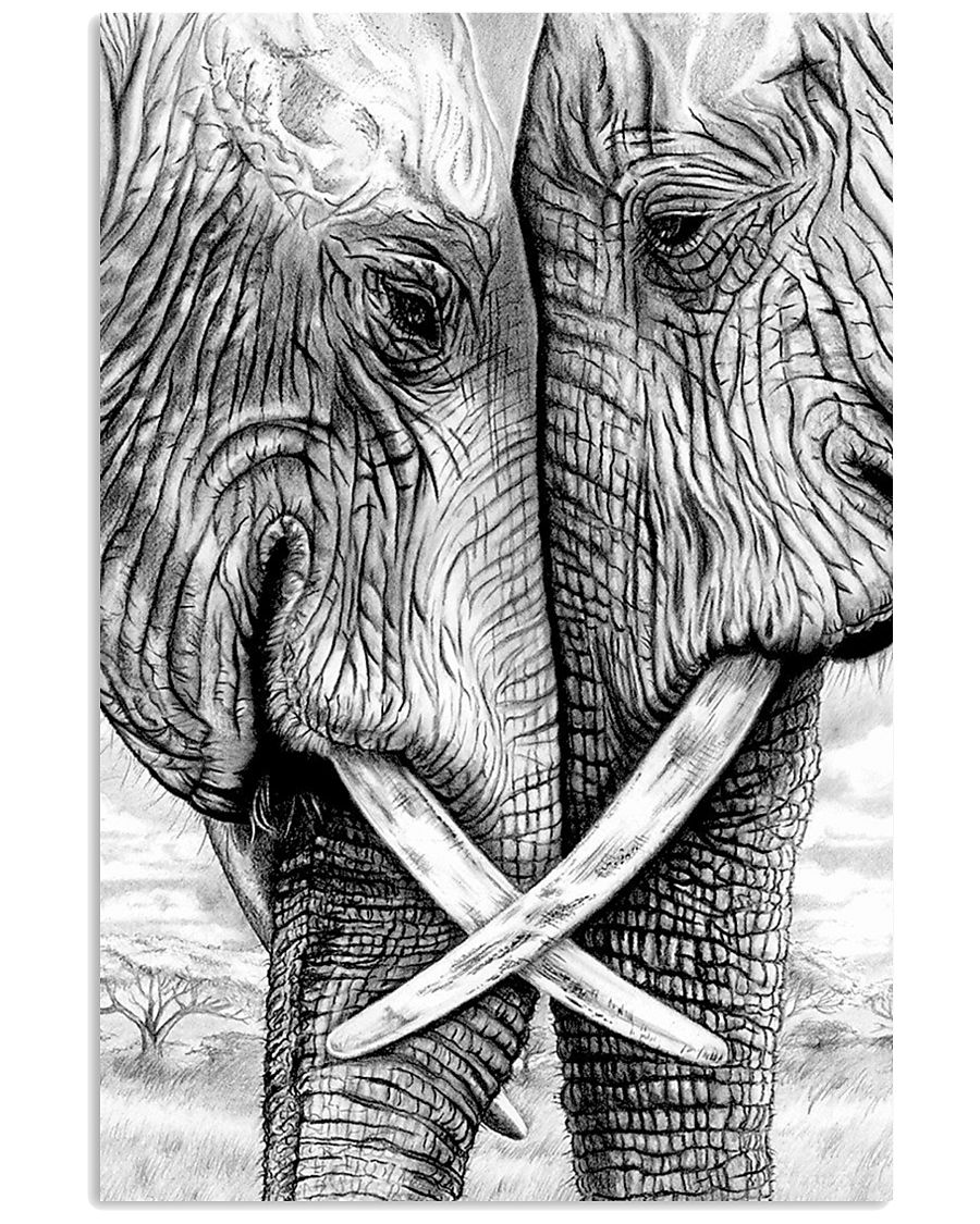 ELEPHANT POSTER 16x24 Poster