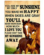 12 you are my sunshine hourse 16x24 Poster front