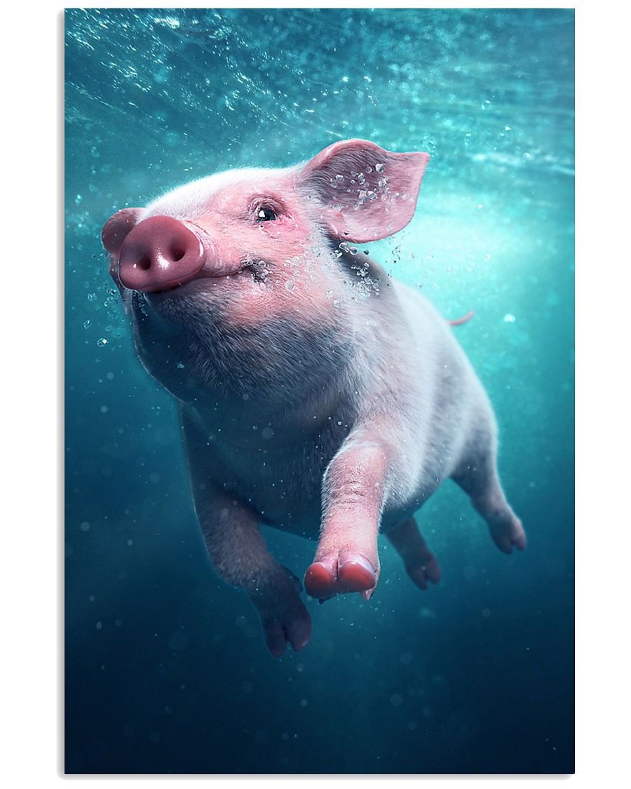 Pig - Pig  swim in sea Poster - TL 16x24 Poster
