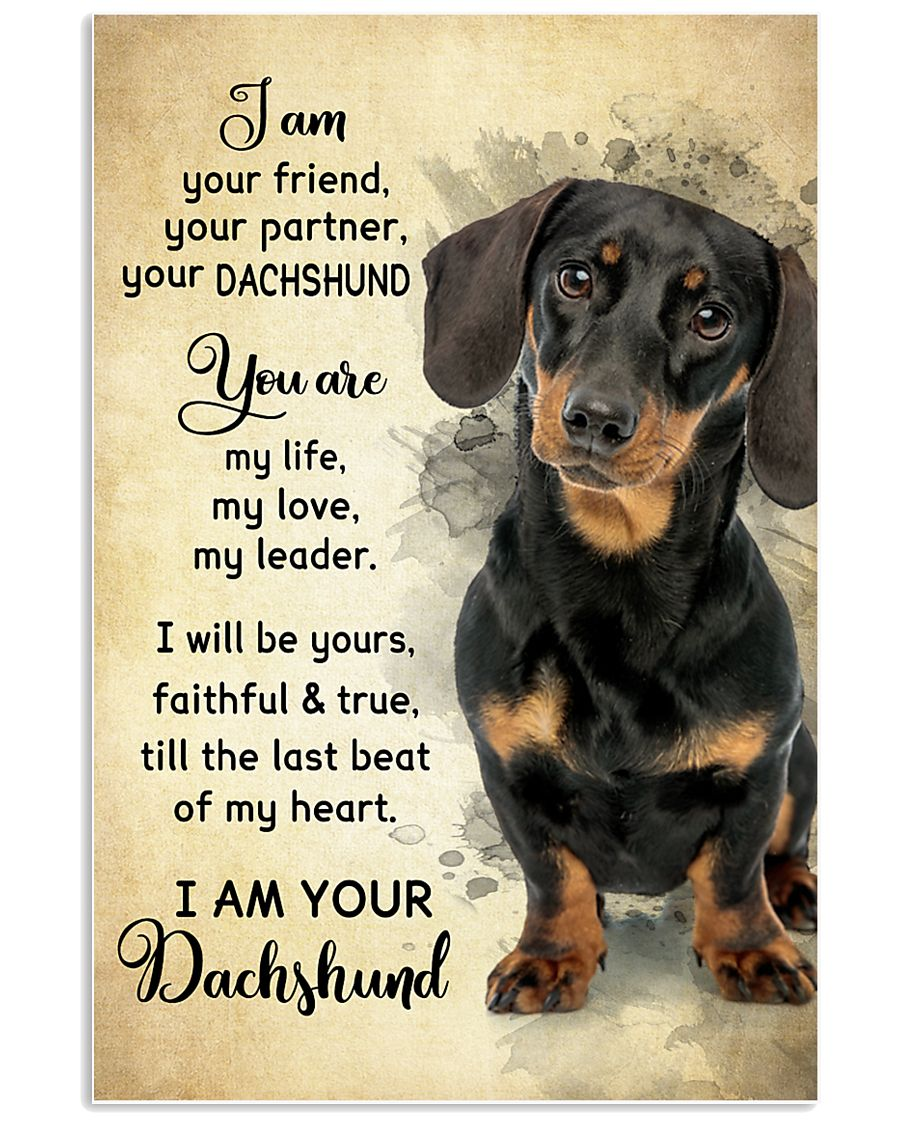 Dachshund - Your Friend Poster SKY 11x17 Poster