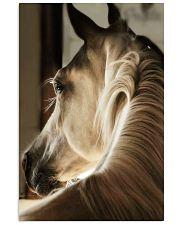 horse poster BG 16x24 Poster front