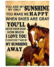 Horse - You are my sunshine 16x24 Poster front