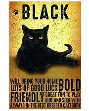 Black Cat Vintage Poster 11x17 Poster front
