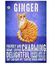Ginger Cat Vintage Poster 11x17 Poster front