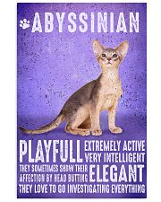 Abyssinian Cat Vintage Poster 11x17 Poster front