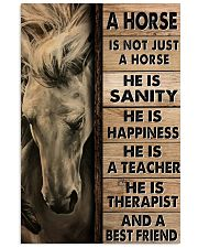 A Horse Is Not Just A Horse Poster 11x17 Poster front