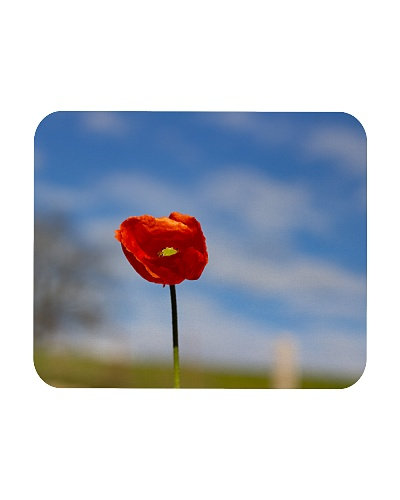 Red Poppy accessories