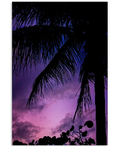 Florida Evening Palm poster print