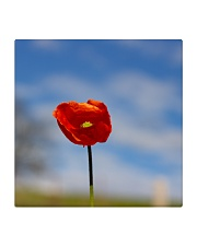 Red Poppy home  Square Coaster thumbnail