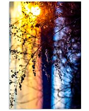 Sunset Bloom poster print 24x36 Poster front