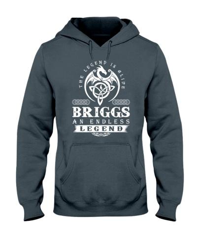 BRIGGS d1 front