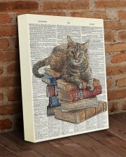 Cat on Book Stack 11x14 Gallery Wrapped Canvas Prints aos-canvas-pgw-11x14-lifestyle-front-09