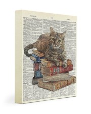 Cat on Book Stack 11x14 Gallery Wrapped Canvas Prints front
